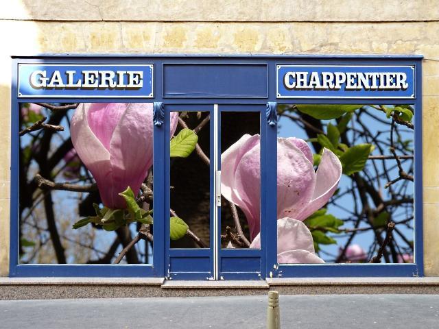 Vitrines insolites Metz 12 Marc de Metz 2011 deux