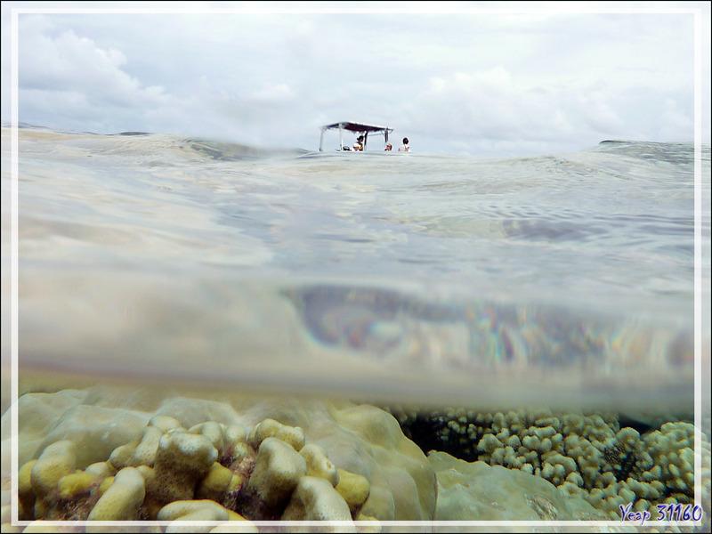 Pendant que nous (les messieurs) plongions, ces dames papotaient sur le bateau - Atoll de Fakarava - Tuamotu - Polynésie française