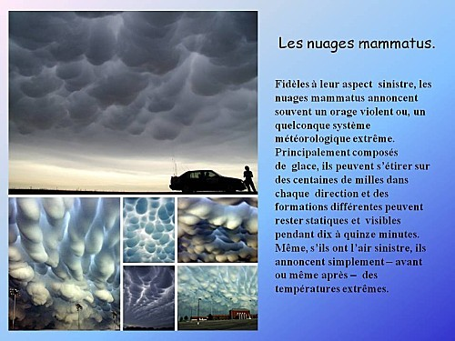 nature-fascinante--11-.JPG