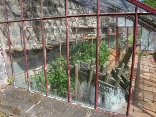 Jardin médiéva, serrel