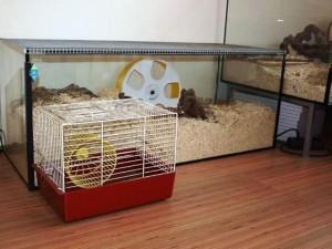 habitat le hamster. Black Bedroom Furniture Sets. Home Design Ideas