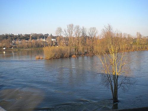 mars 2010 019