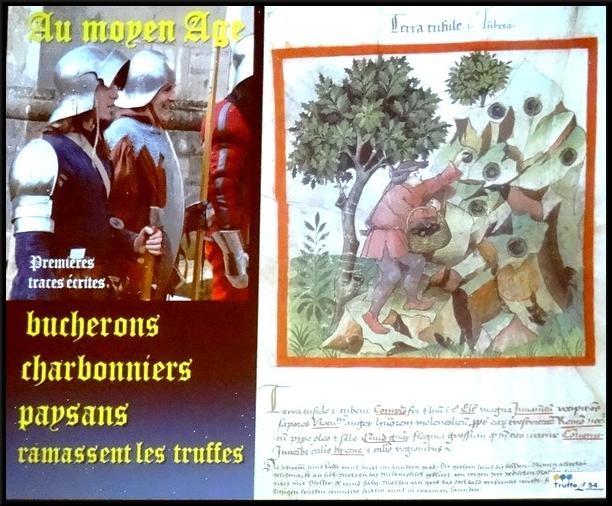 Les conférences sur la truffe et le crémant Châtillonnais ont été très appréciées des visiteurs du marché de la truffe à Leuglay