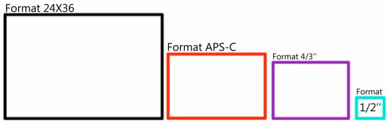 tailles-capteurs-illustration.jpg