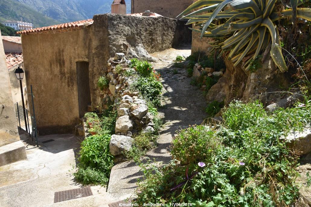 Dans les rues de Belgodère - Corse