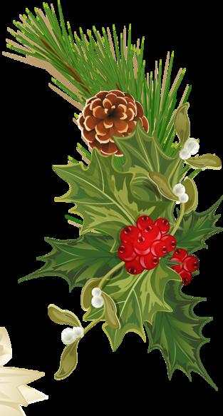 tubes noel / fleurs, gui, couronnes