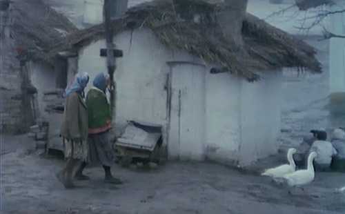 J'ai même rencontré des tziganes heureux, Skupljaci Perja, Aleksandar Petrovic, 1967