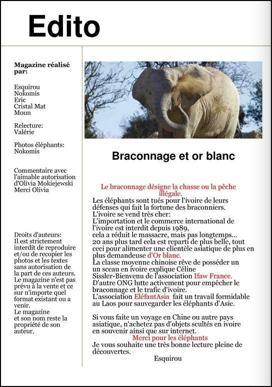 """Magazine """"Toutes saisons"""" numéro 3"""