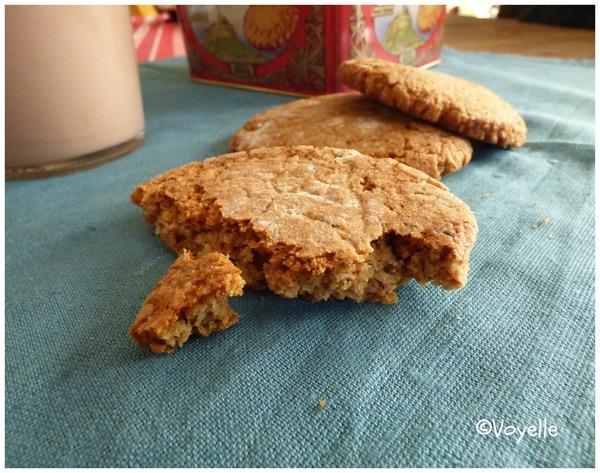 Biscuits à l'okara