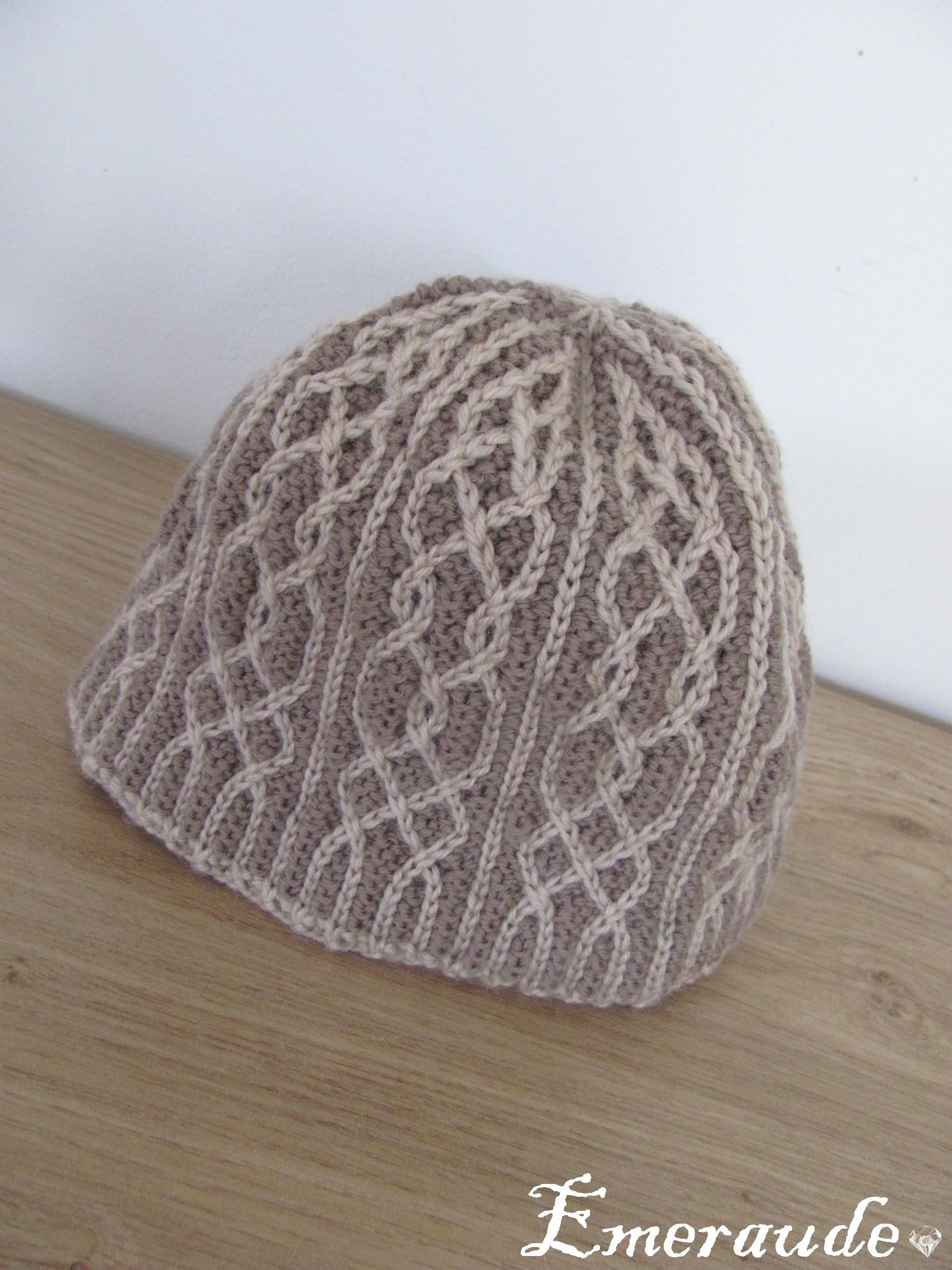 Tricot: bonnet bicolore à torsades