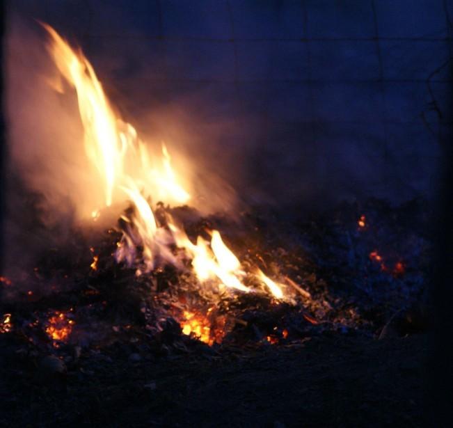 Fresquel feu 7541