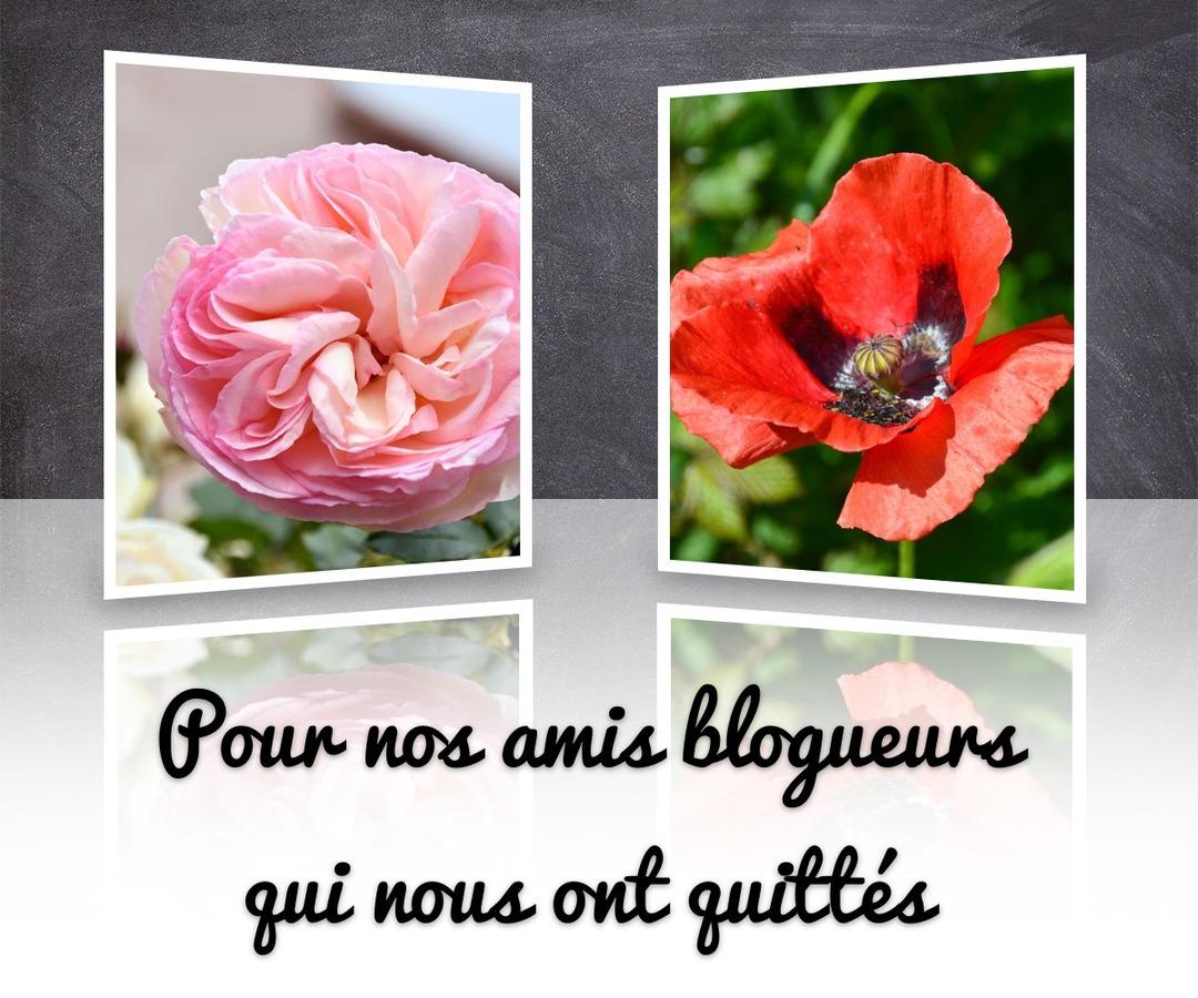 Ces fleurs pour nos amis blogueurs disparus.