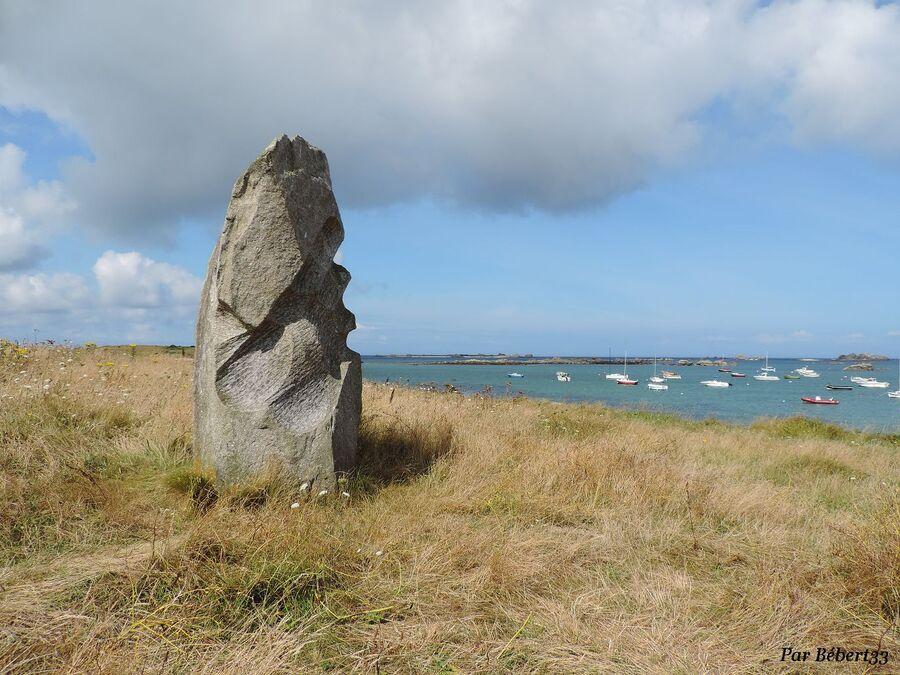 Lilia dans le Finistère Nord