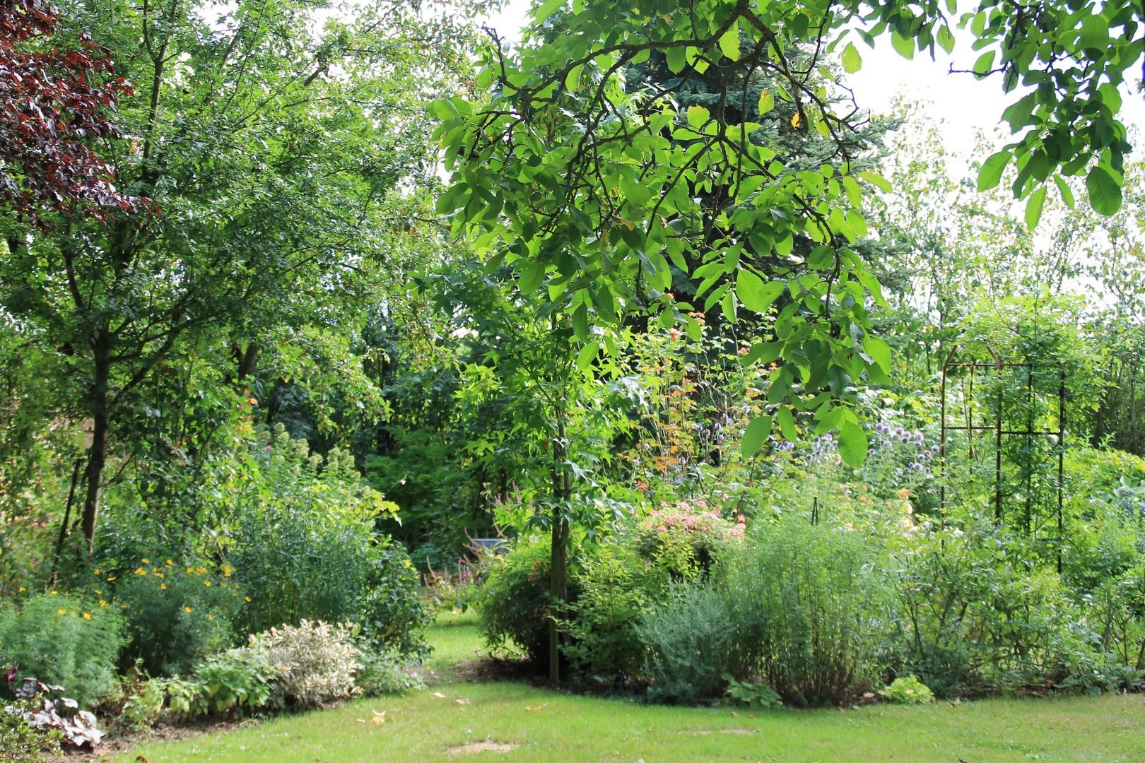 Le jardin de val rie r verie au jardin for Andy tauer reverie au jardin