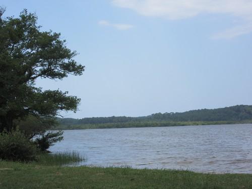 Le lac Léon (40) en août