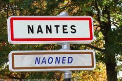 Caitlin à Nantes pour la Wazabi