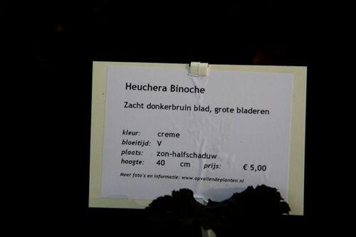 Beervelde - Octobre 2014 : mes achats