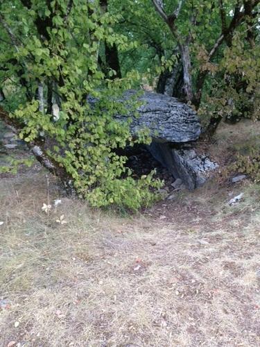 dolmen de Joncas