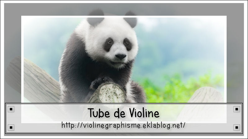 Mes tubes animaux