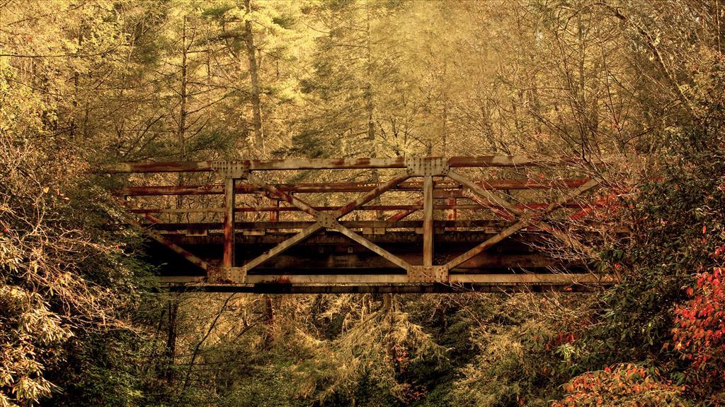 """Défi chez Khanel """"Une histoire de pont"""""""