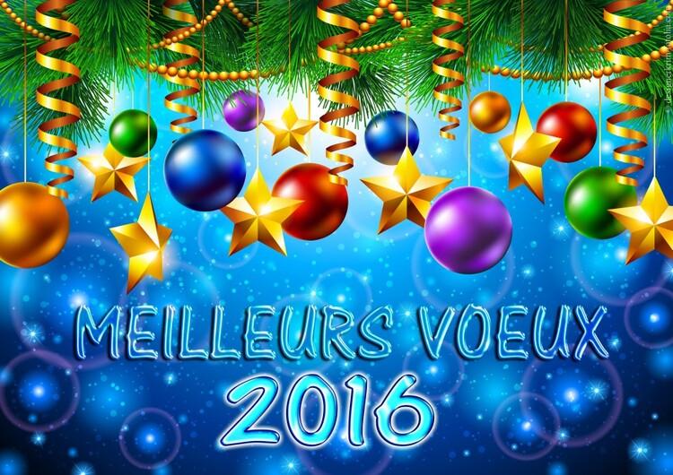 Meilleurs voeux  2016 !!