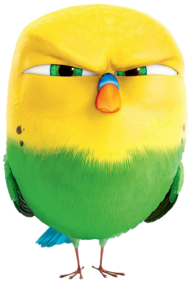 Mes tubes Angry Bird