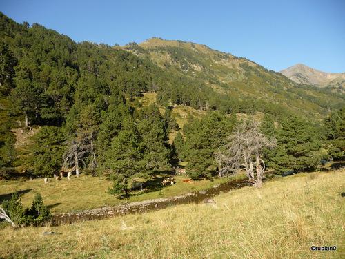 La Muntanyeta 2436m