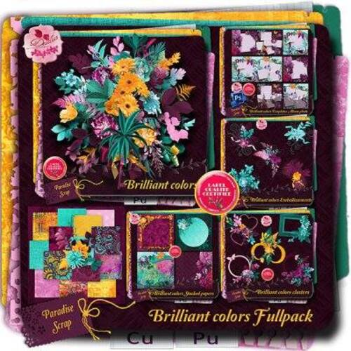 KIT BRILLIANT COLORS DE DESCLICS