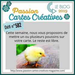 Passion Cartes Créatives#582 !