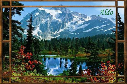 PPS Forêts du monde