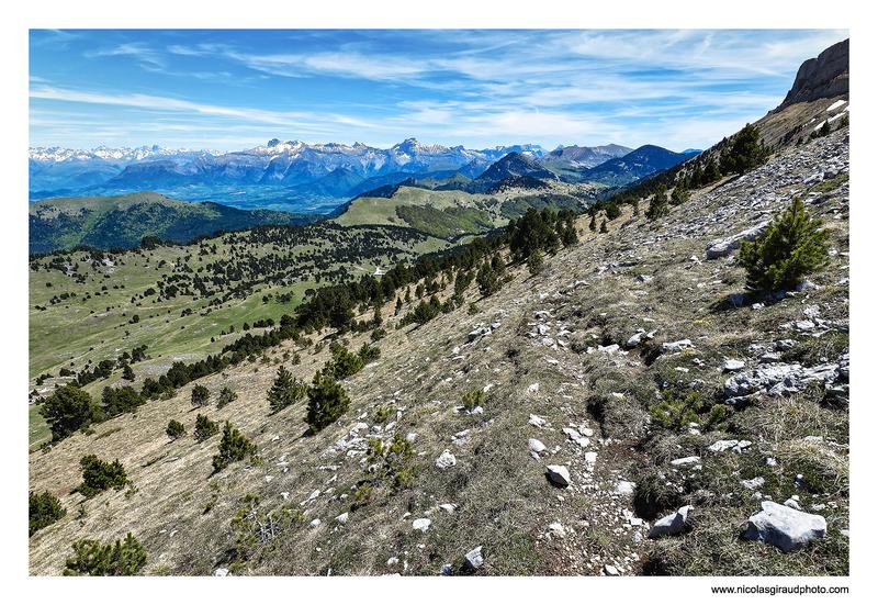 Vallon de Combeau de Praorzel à la Montagnette