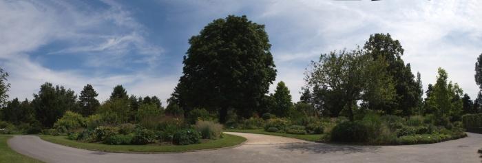 Le parc floral du bois de  Vincennes