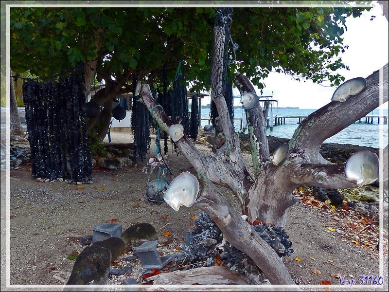 Entre deux rincées, balade vers Rotoava, le seul village de Fakarava - Tuamotu - Polynésie française