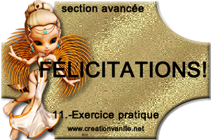 Section Avancée (Suite)