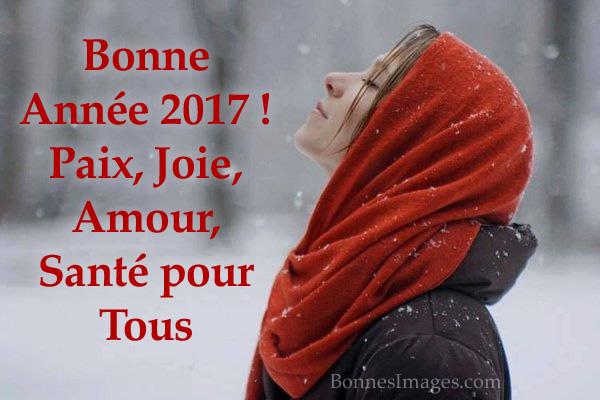 Bonne année 2017 image 7