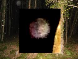 orbes 72-0011 F,G,H
