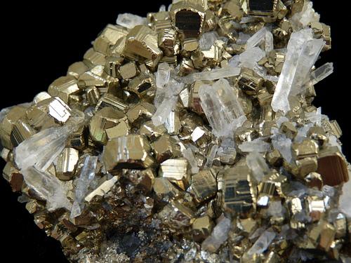 Pyrite avec Quartz