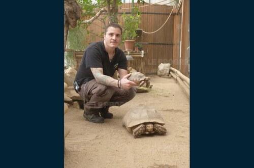 Une journée dédiée aux tortues à Saint-Martin-la-Plaine