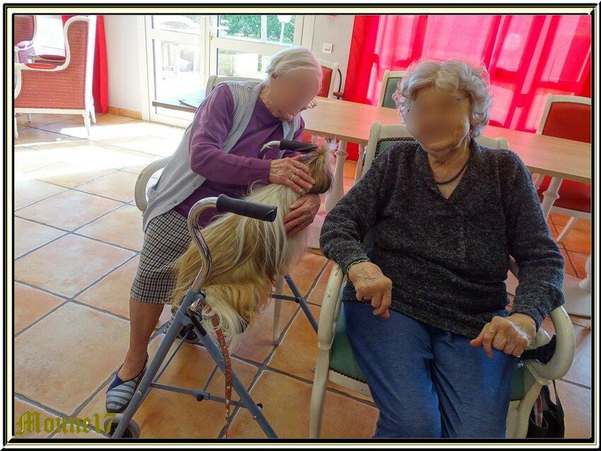 """Calinothérapie avec les"""" Cabots d'Oléron"""""""