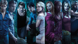 True Blood ! Sexe, Drogue et Rhythm and Blues... Et éventuellement des vampires.