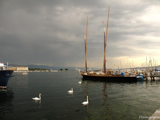 genève 2009_la neptune (56)