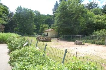Zoo Neunkirchen 2012 093