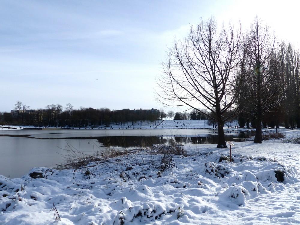 Amiens sous la neige (2)
