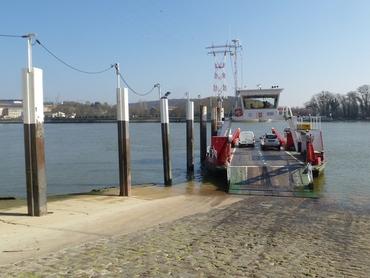 La Seine - Bac de Yainville (rive gauche)