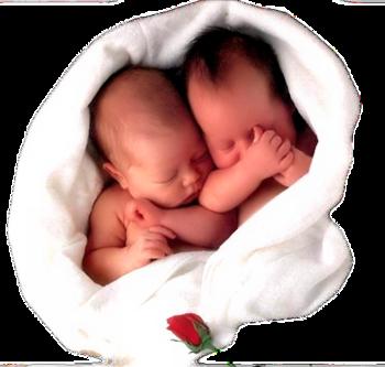 Bebes (2)