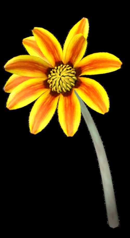 Tube de dahlia jaune (image-png)