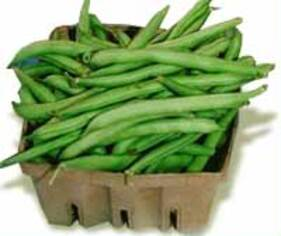 Haricots verts entiers Marie Thumas