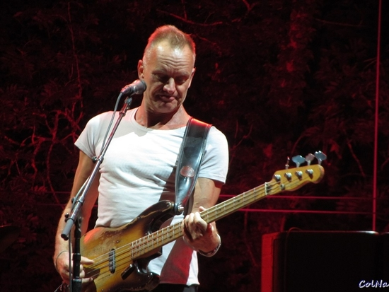 Sting (Official site)