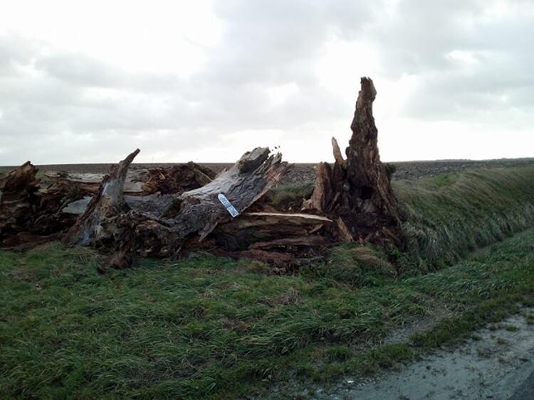 Givry et son arbre de la Potence