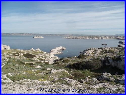 Balade aux iles du Frioul, Pomègues